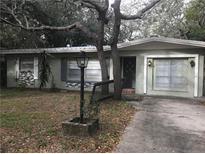 View 4126 E 99Th Ave Tampa FL
