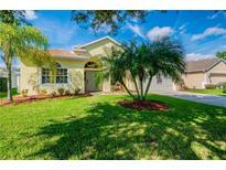 View 5207 Villagebrook Dr Wesley Chapel FL