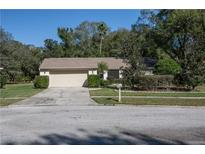 View 4519 Grainary Ave Tampa FL