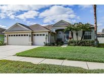 View 1535 African Violet Ct Trinity FL