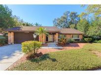 View 11704 Plumosa Rd Tampa FL