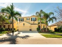 View 10407 Hampton Meadow Way Riverview FL