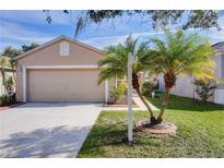 View 8541 Deer Chase Dr Riverview FL
