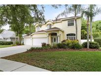 View 16026 Penwood Dr Tampa FL