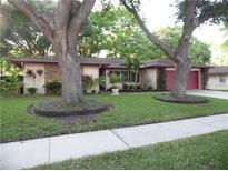 View 229 Ball Park Ave Seffner FL
