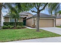 View 34917 Meadow Reach Dr Zephyrhills FL