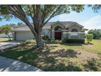 View 9623 Glenox Ln Riverview FL