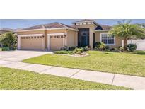 View 10612 Carloway Hills Dr Wimauma FL
