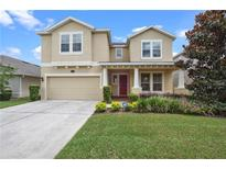 View 19231 Early Violet Dr Tampa FL