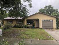 View 5614 Cookman Dr Tampa FL