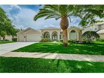 View 4185 Amber Ln Palm Harbor FL