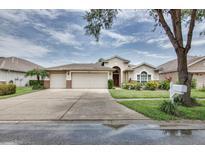 View 18203 Collridge Dr Tampa FL