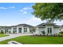 View 16516 Hatton Rd Tampa FL
