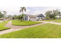View 4701 Windflower Cir Tampa FL