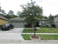View 6830 Pine Springs Dr Wesley Chapel FL