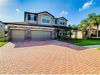 View 13319 Sunset Shore Cir Riverview FL