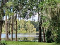 View 1101 Lake Charles Cir Lutz FL