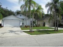 View 13524 Bellingham Dr Tampa FL