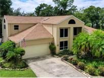 View 16522 Cayman Dr Tampa FL