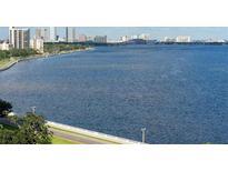 View 3301 Bayshore Blvd # 1501E Tampa FL