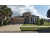 View 7101 Nightshade Dr Riverview FL