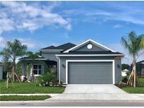 View 3814 Manorwood Loop Parrish FL