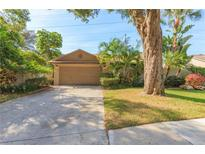 View 636 Channing Dr Palm Harbor FL