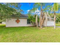 View 15602 Willowdale Rd Tampa FL