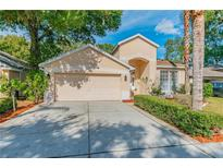 View 4607 Dunnie Dr Tampa FL
