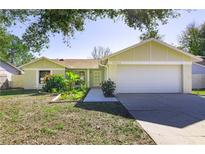 View 15504 Timberline Dr Tampa FL