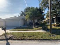 View 12003 Cedarfield Dr Riverview FL