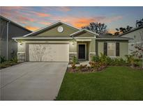 View 9226 Freedom Hill Dr Seffner FL