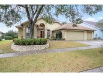 View 4442 Winding River Dr Valrico FL