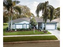 View 9611 Norchester Cir Tampa FL