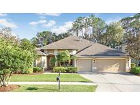 View 2600 Brookforest Dr Wesley Chapel FL