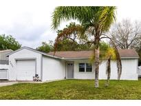View 5603 Carrollwood Meadows Dr Tampa FL