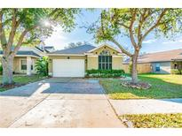 View 6615 Northhaven Ct Riverview FL
