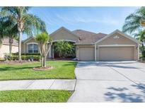 View 26840 Shoregrass Dr Wesley Chapel FL