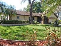 View 2757 Buckhorn Oaks Dr Valrico FL
