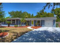 View 3113 W Tyson Ave Tampa FL