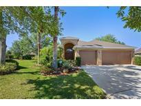 View 16303 Bridgelawn Ave Lithia FL