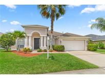 View 12741 Tar Flower Dr Tampa FL
