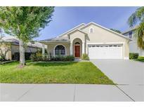 View 14644 Corkwood Dr Tampa FL