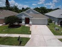 View 3217 Keswick Ct Land O Lakes FL