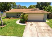 View 14133 Arbor Hills Rd Tampa FL