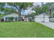 View 11603 Lipsey Rd Tampa FL