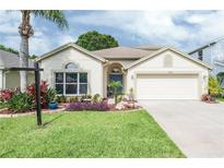 View 3138 Sunwatch Dr Wesley Chapel FL