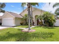 View 13412 Ironton Dr Tampa FL
