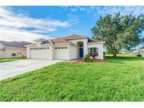 View 23734 Hastings Way Land O Lakes FL