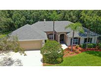 View 3313 Westmoreland Dr Tampa FL